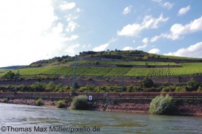 Weinberge bei Rüdesheim